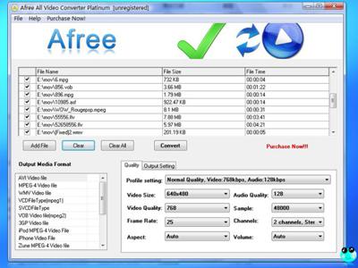 Afree All Video Converter Platinum
