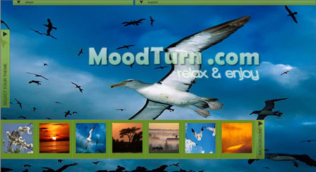 Moodturn