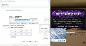 CopyActivationvà paste vào các ô như bên dưới và chọnNext